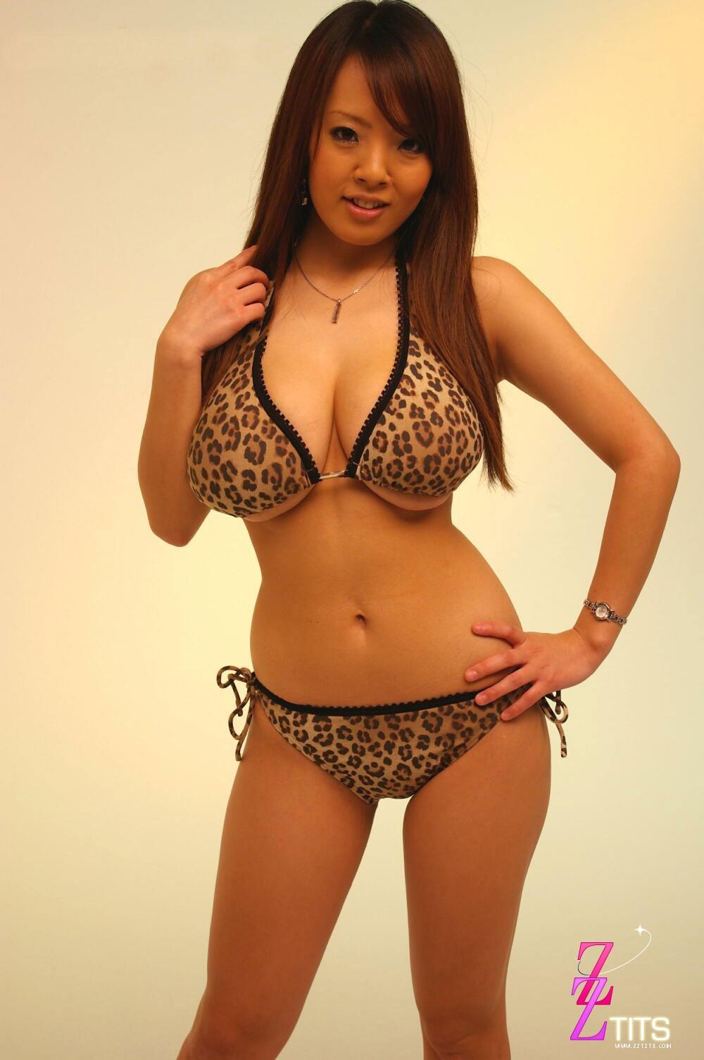 hitomi tanaka leopard