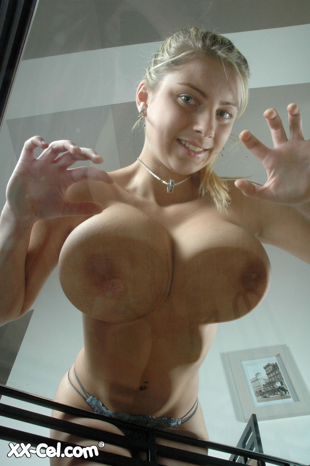 Sexy Big Tits Pressed Against Glass  Hot Girl Hd Wallpaper-2870